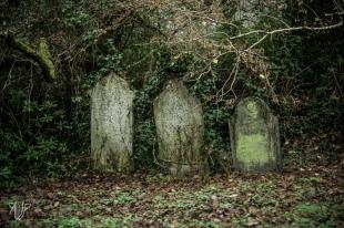 cemetery-8
